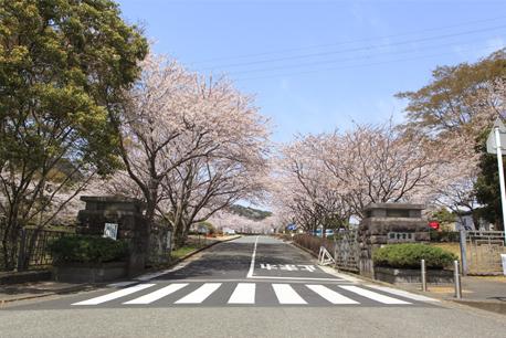 鎌倉霊園店 (鎌倉霊園内)
